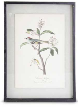 Black wood framed gray bird print