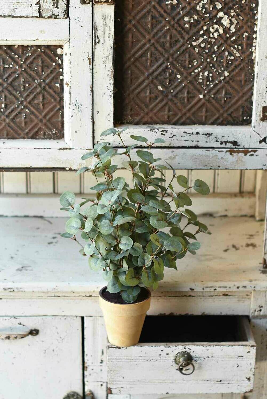 """19"""" Garden Eucalyptus Potted Bush"""