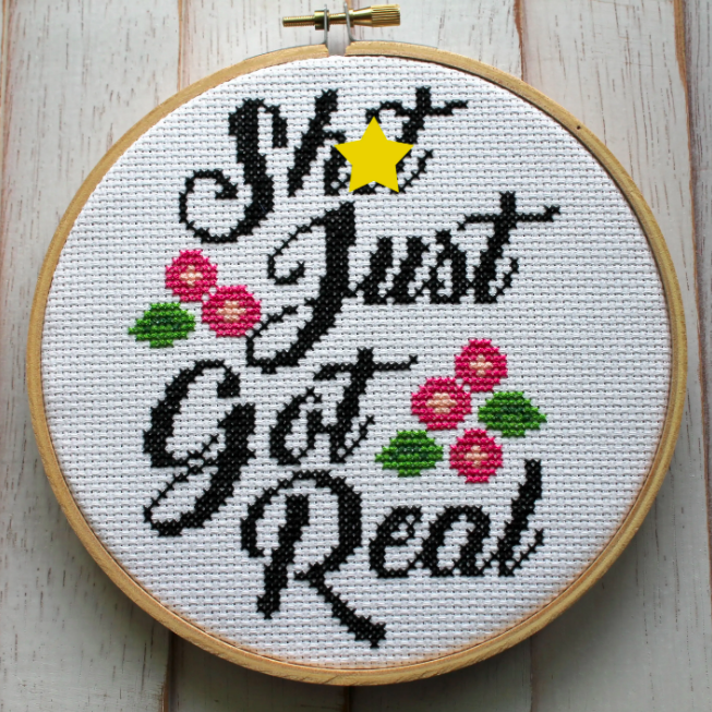 Cross Stitch Kit Shit Just Got Real