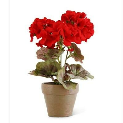 "9"" Red Geranium in Distressed Clay Pot"