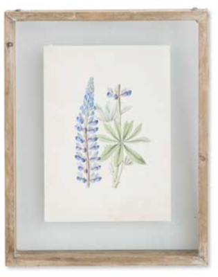 Botanical Print Style A in Shadow Box