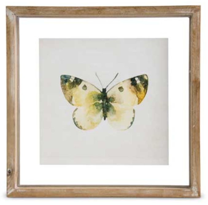 Butterfly Print Style D in Shadow Box