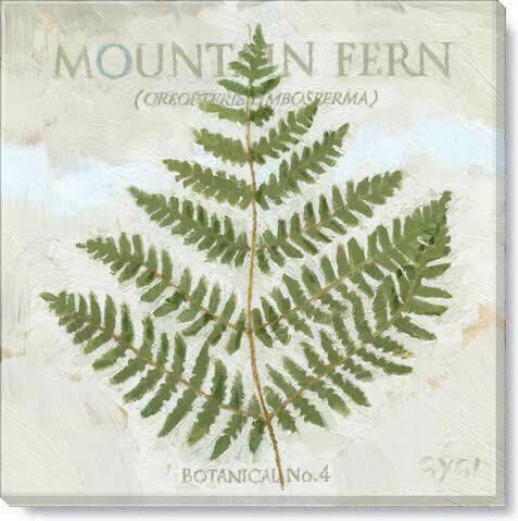 Mountain Fern Giclee Wall Art