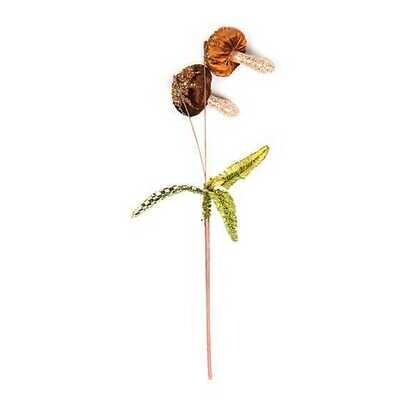 Woodland Mushroom Pick