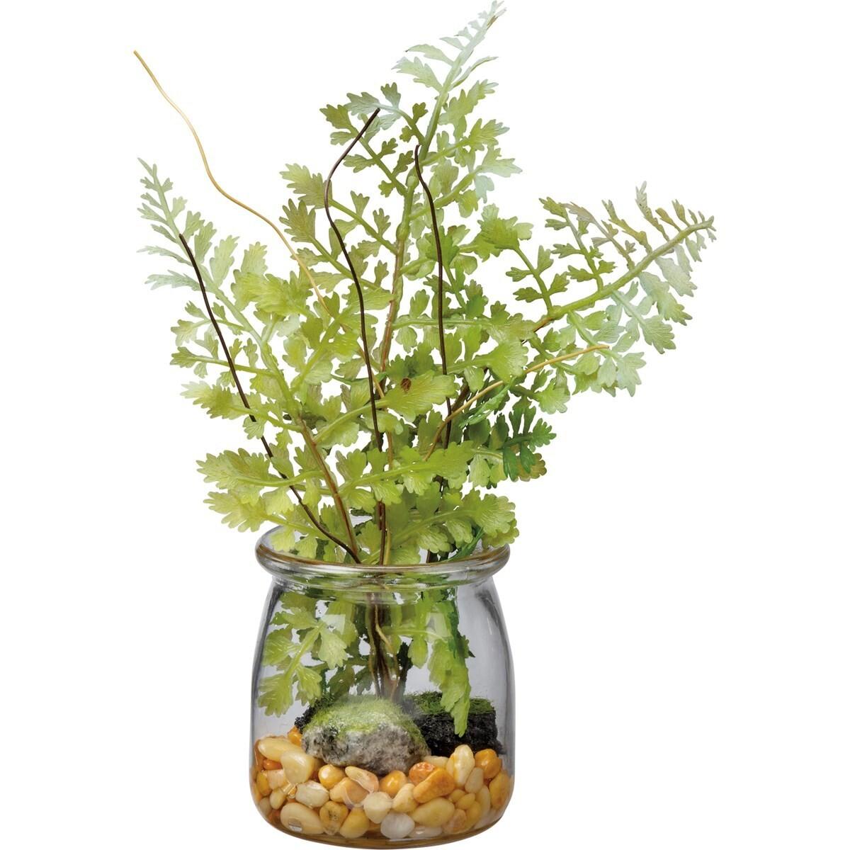 Jar - Small Maidenhair Fern