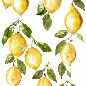 IOD Image Transfer     Lemon Drops 12'' x 33''