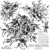 Rose Toile ~  IOD Decor  Stamp ~
