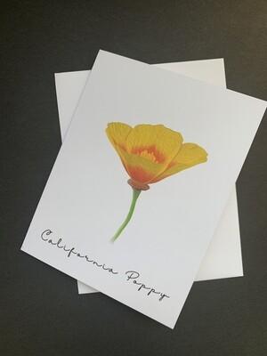 California Poppy Postcard (B)
