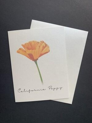 California Poppy Postcard (C)