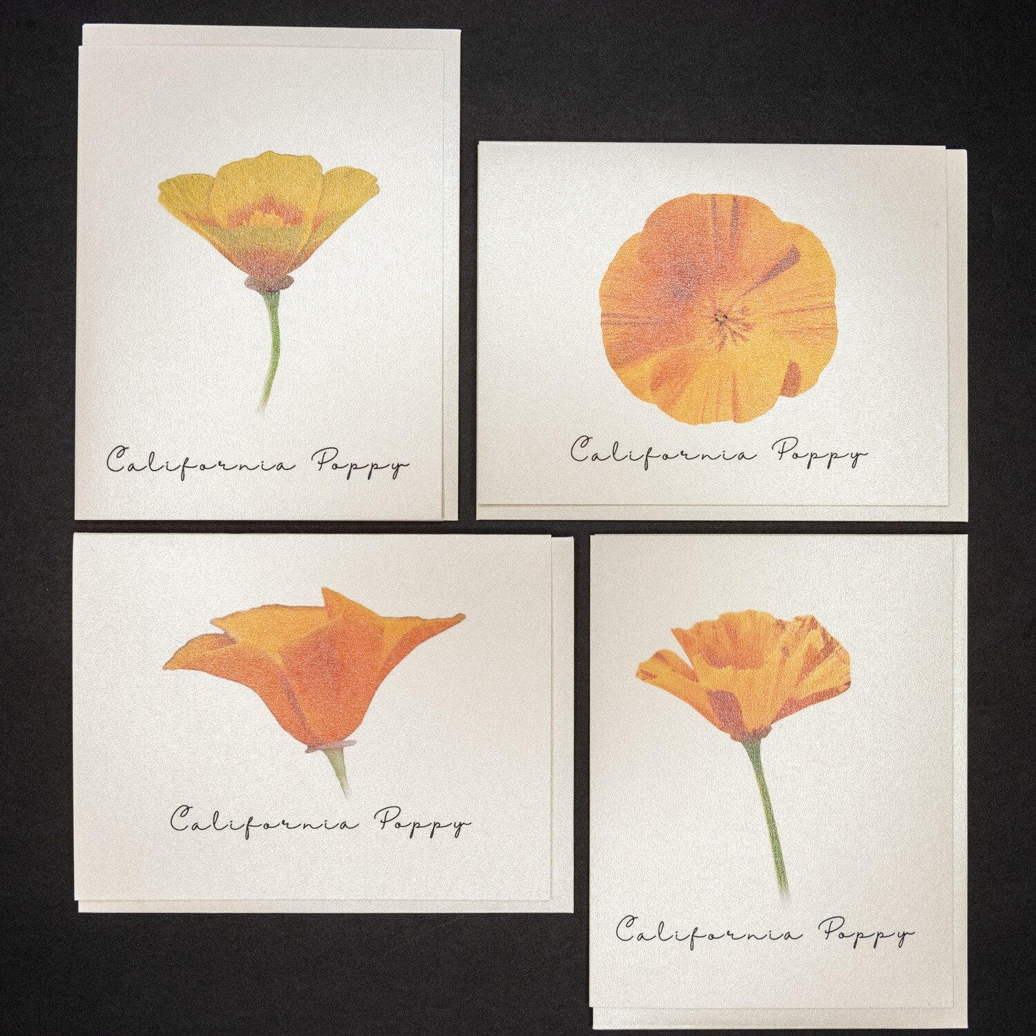 Set of 4 Ca Poppy Wildflowers Postcards