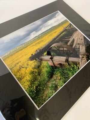 Carrizo Plain 8x10 Print