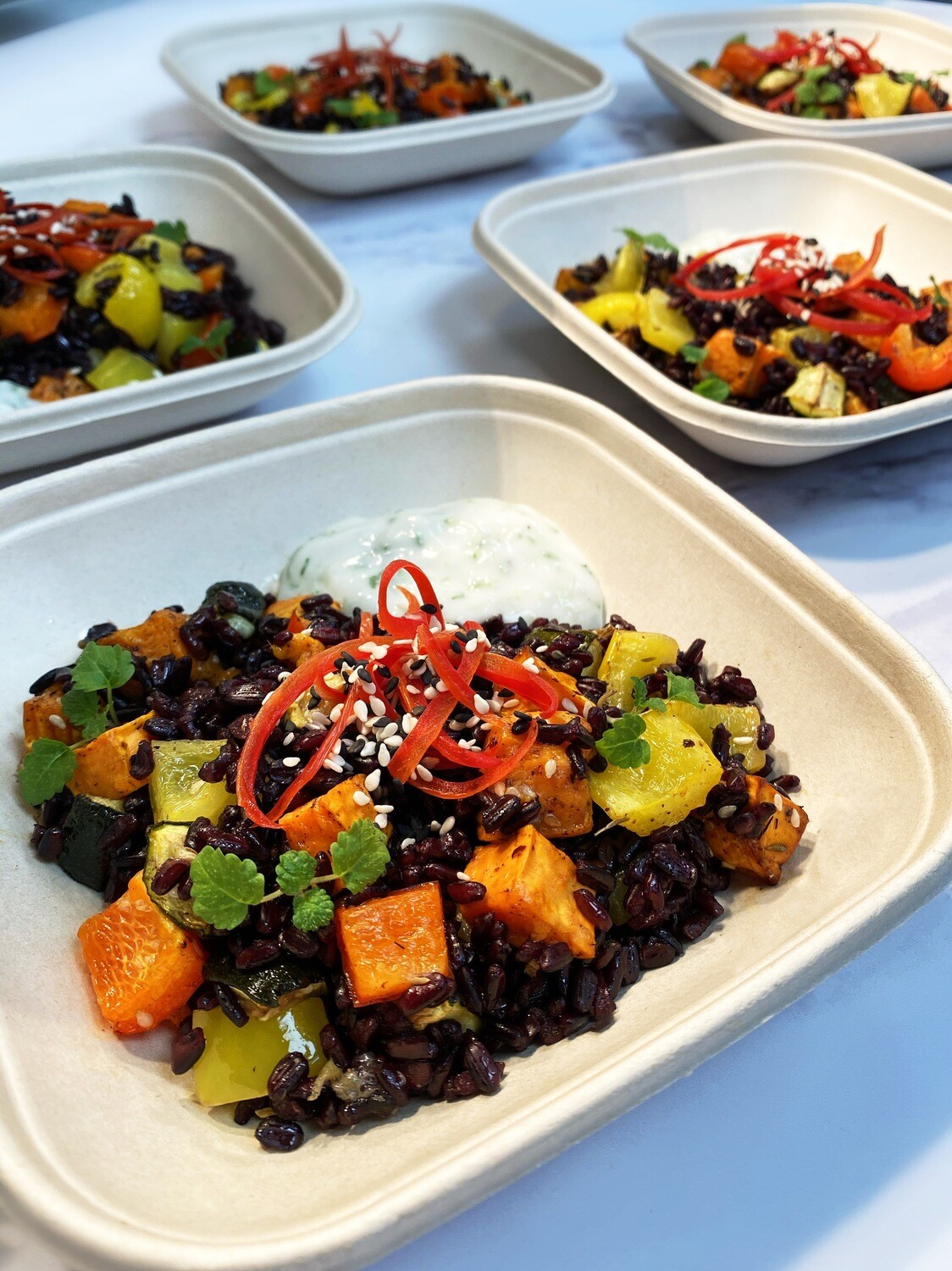 Roasted Mediterranean Vegetable & Black Rice Salad served with Tzatziki (Express)