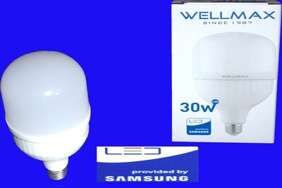 Էլ.լամպ LED Wellmax  30W (E27 6500K)