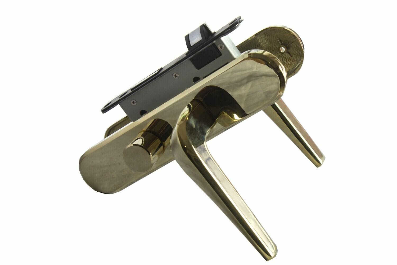 Դռան փականի կոմպլեկտ LEIYA 68A1-217 PVD