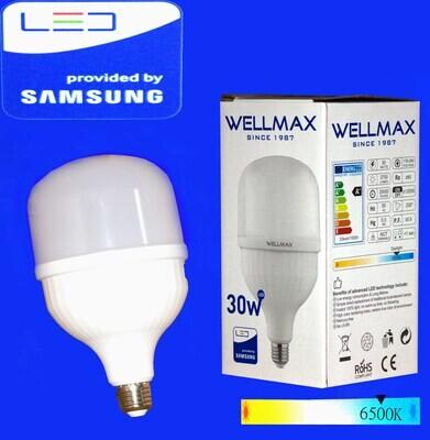 Էլ.լամպ LED Wellmax  30W (E27 6500K)