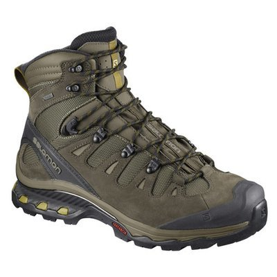 Salomon Quest 4D 3 GTX Wren