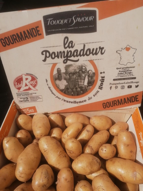 """Pomme de terre """"pompadour"""""""