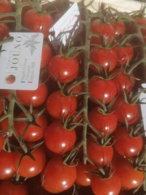Tomates cerises (jouno)