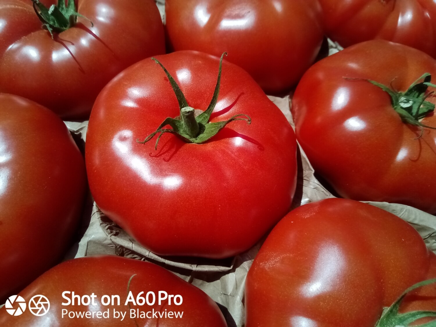 """Tomates """"Charnue"""""""