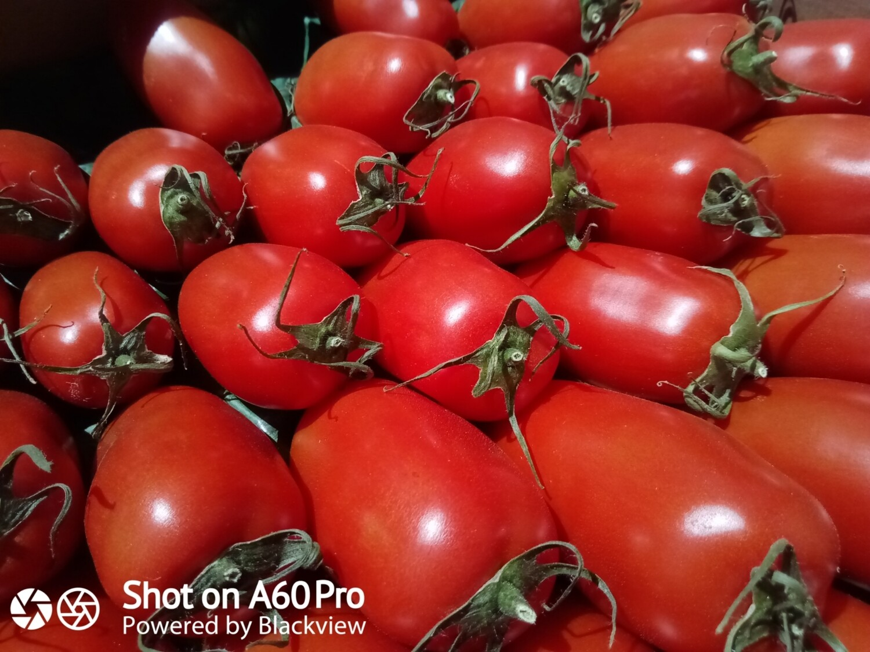 "Tomates ""Torino"""
