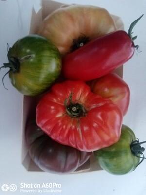 "Tomates ""Mix Colors"" pleine terre (2 kilos)"
