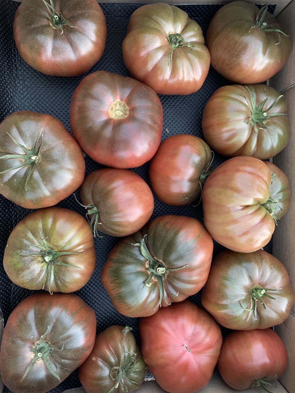 """Tomates """"noire de Crimée"""" de Provence"""