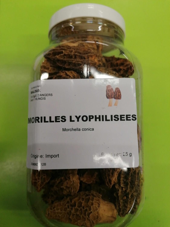 Morilles lyophilisées