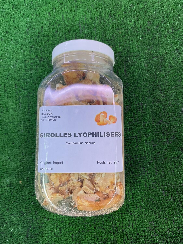Girolles Lyophilisées