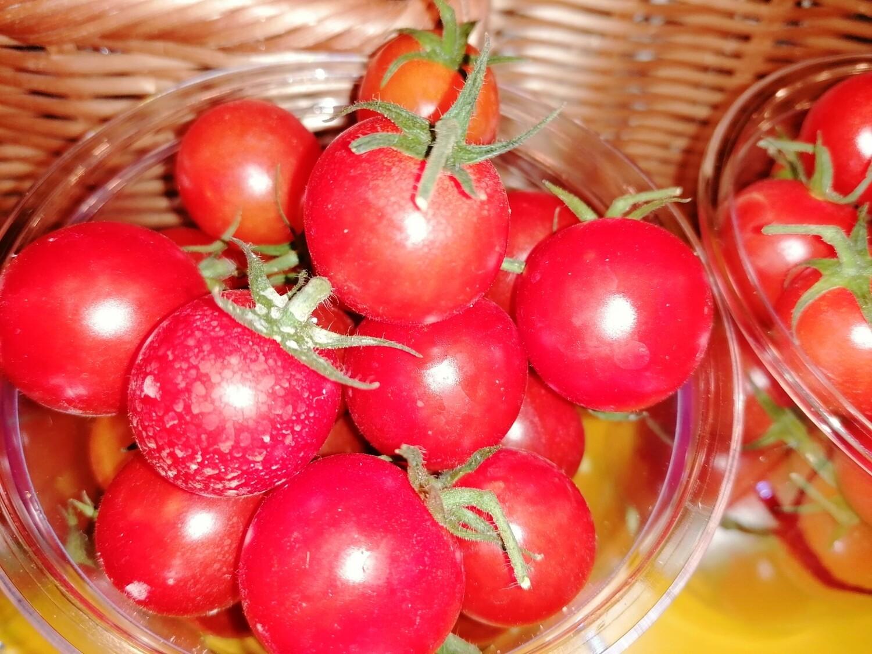 """Tomates """"coeur de pigeon"""""""
