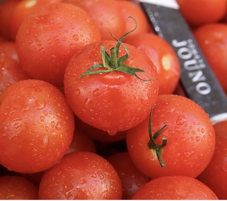 Tomates « Jouno » Vrac