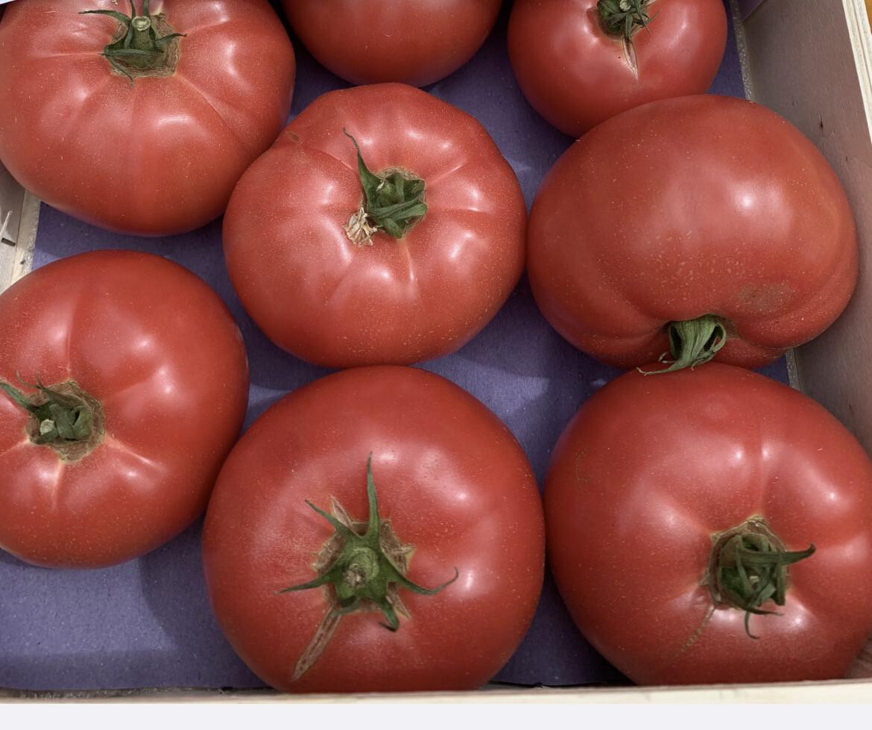 "Tomates ""rose de Berne"" de Provence"