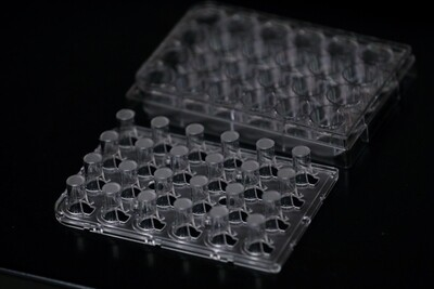 24-Well Corning Transwell Plate with Bio-Spun™ 1.0 IV PDLGA Membrane (Coming Soon)