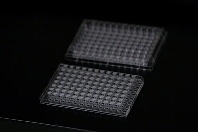 96-Well Corning Transwell Plate with Bio-Spun™ 1.0 I.V. PDLGA Membrane