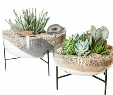 AR283P PLANTED Lia Glass Bowl on Stand LG