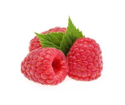 Raspberry Clam Shell