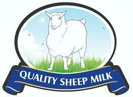 Quality Sheep Milk Cheese
