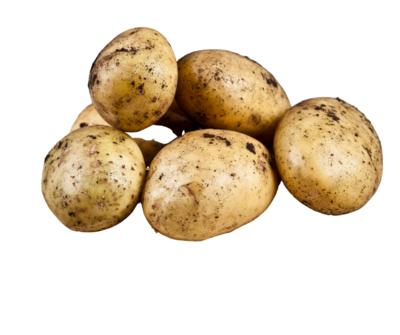 Local Potato & Bag