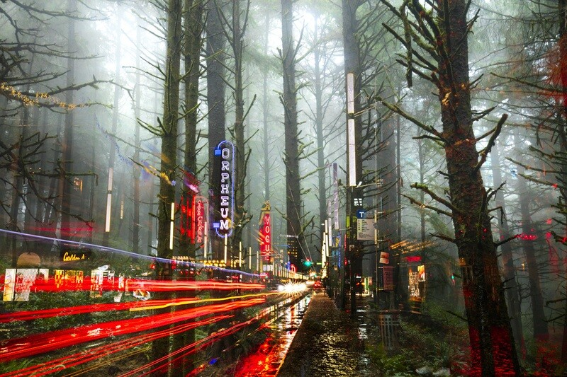 Vanishing Trees Granville Street