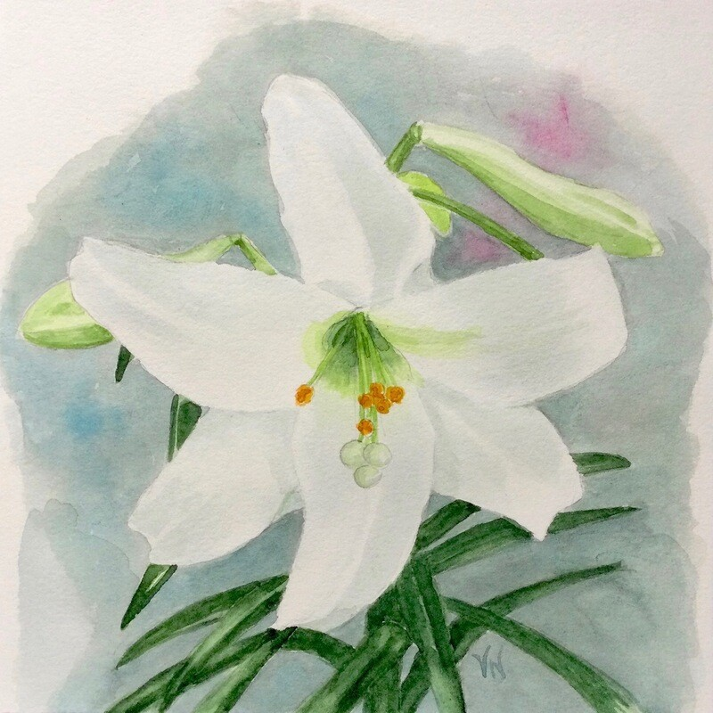 Joy (White Lily)