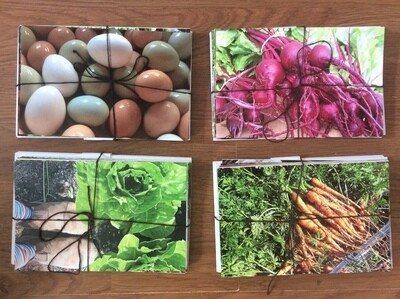 Farmhouse Greeting Cards - Set of 10