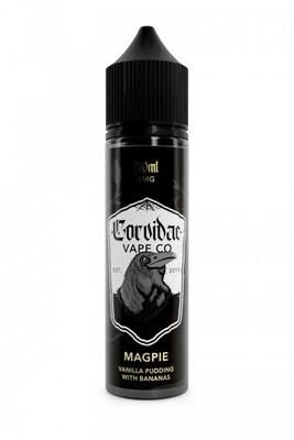 Corvidae Magpie