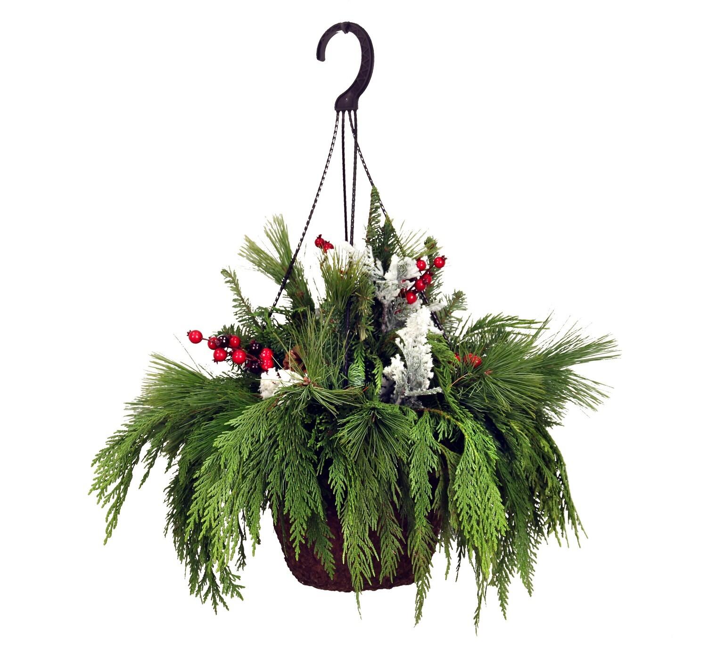 Evergreen Hanging Basket-Mixed 10
