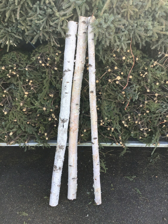 Birch Pole 3'-5'