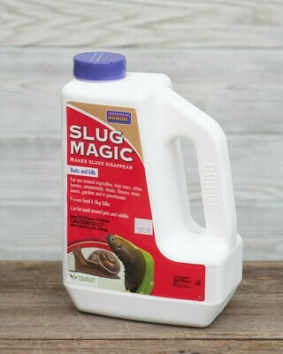 Slug Magic