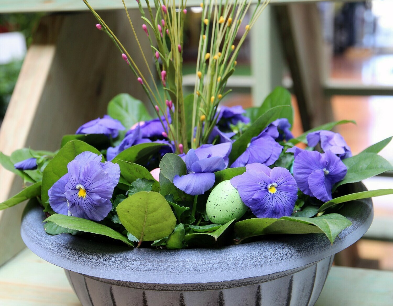 Easter Pansy Centerpiece Kit