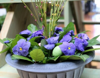 Decorated Pansy Bowl 12