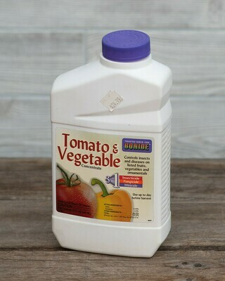 Tomato and Vegetable
