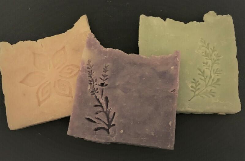 Sampler Bundle - Evergreen, Oatmeal Honey and Lavender