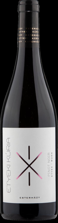 Pinot Noir Etyek Kuria DECANTER 93points Caroline Gilby MW 'Proper Pinot Noir'
