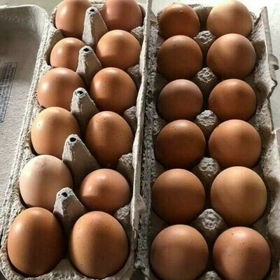 Farm Fresh Brown Eggs 1 Dozen - LOCAL Free Range